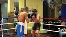 Fight 4 06.12.2015 proboxing.eu