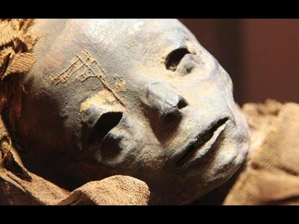 УЧЁНЫЕ УТАИЛИ ЭТОТ АРТЕФАКТ! Раскрытие тайн: Величайшая ЗАГАДКА происхождения человека.