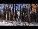 Даже робот занимается спортом