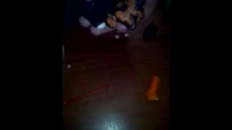 видеолепка лепем кота Куки