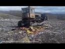 В Красноярске раздавили 648 5 кг санкционных яблок