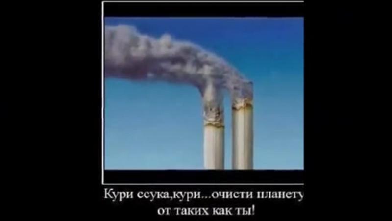 шок' как бросить курить