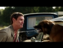 Отрывок из фильма Тупой и еще Тупее 2 с собакой