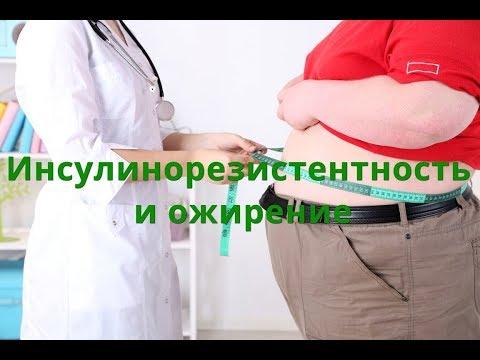 Инсулинорезистентность без ожирения. Причины образования жира вокруг талии