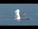Потопление турецкой подводной лодкой Yıldıray корабля-мишени на учениях