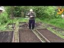 Посадка свеклы Заслуженный агроном Корнилов советует часть 2