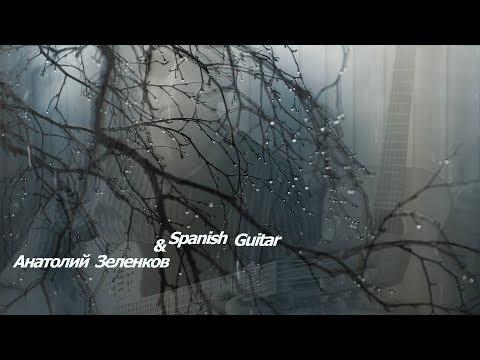 ИСПАНСКОЕ ФЛАМЕНКО НА ГИТАРЕ ГИТАРИСТ ВИРТУОЗ Анатолий Зеленков Spanish Guitar