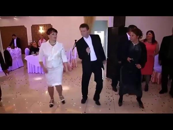 Сизая голубка Band ODESSA