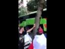 Похищают багаж из автобуса с туристами Франция