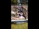 Струковский сад после обновления!!
