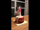 Котан задувает свечку