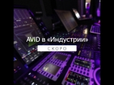 AVID Media Composer и AVID Pro Tools в Школе кино и телевидения «Индустрия»!