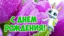 Красивое поздравление с днем рождения девушке женщине! Музыкальные поздравления ZOOBE Муз Зайка