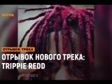 ОТРЫВОК НОВОГО ТРЕКА: Trippie Redd [Рифмы и Панчи]