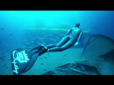 Freediving Lanzarote - Yellow Submarine