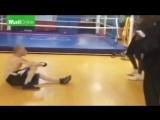 342504966738 Интернеттролль Чарли Зеленов получает люлей от негра-боксера за свой треп про него и его дочь.