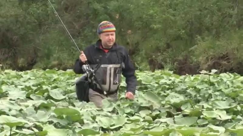 Анатолий Полотно и Федя Карманов - Счастья Вам