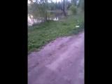 Чапаевская рыбалка - Live