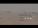 Снайпер хуситов аннигилировал южно-йеменца в Шабве. 8 апреля, 2017 года.