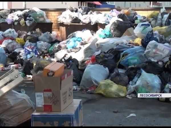 Лесосибирцы жалуются на мусорный коллапс