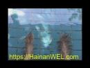 Горячие источники с кусачими рыбками в культурном центре народности Ли в Санья остров Хайнань Китай экскурсия на видео