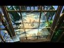Tarzan 1999 film soundtrack