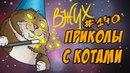 Приколы С Котами И Кошками 2018 Смешные Коты ДО СЛЁЗ
