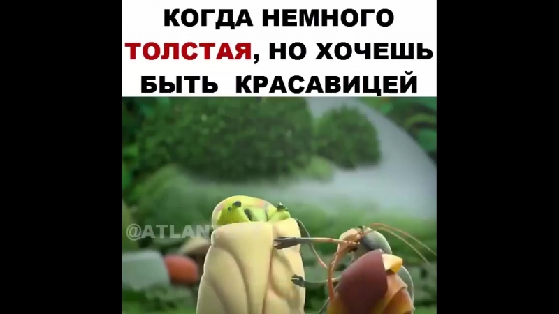 Mult.rus_1utm_source=ig_share_sheetigshid=1fbz8zzxbfwg6