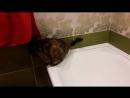 однажды в ванной