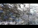 Зимняя сказка Горный Алтай
