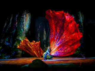 Experience TORUK through the eyes of the audience - Cirque du Soleil
