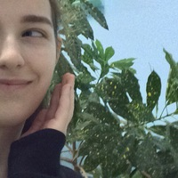 Софья Кашенко, 20 лет, Томск, Россия