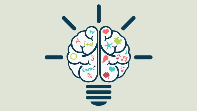 Что важнее эмоции или логика?