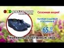 СВЕТОФОР_Коркино_15.03_1