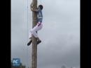 Взобраться на 9 метровое дерево за 9 8 секунды Легко