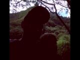Bryan Dechart and Amelia Rose Blaire - > Hawaii.