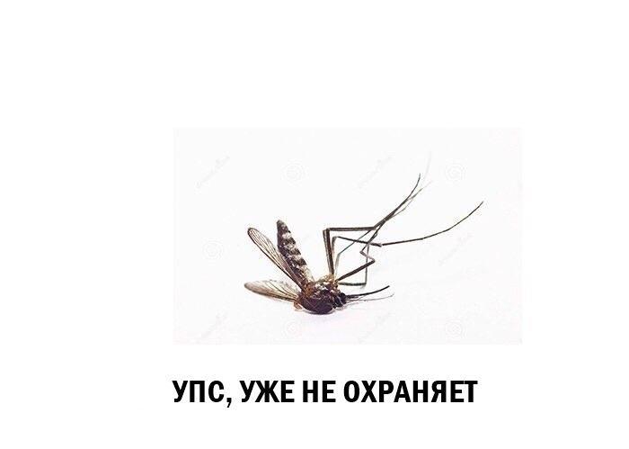Антон Якимов | Кострома