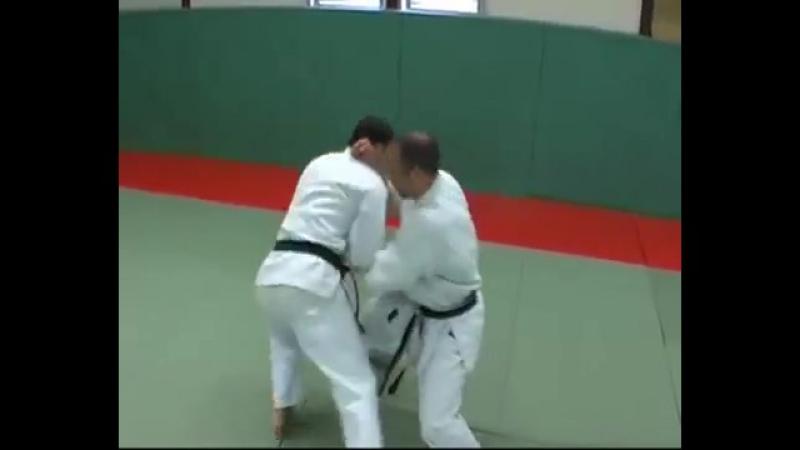 4 Tekki Shodan Kata Kumite Bunkai Didier Lupo