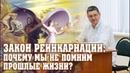 Закон реинкарнации Почему мы не помним прошлые жизни - Сергей Курдюмов