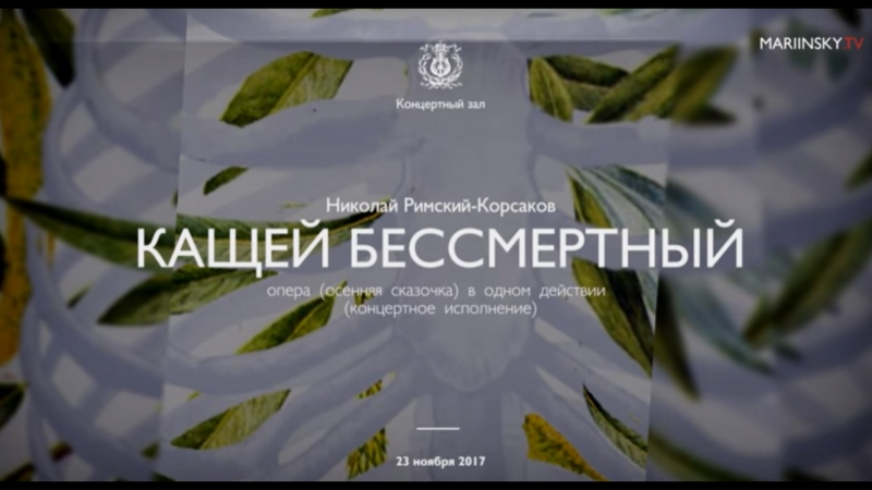 Кащей бессмертный. Римский-Корсаков. Мариинский театр (23.11.2017)