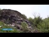 Саратовская область. Останки погибших в Сталинградской битве дедов валяются в овраге вперемешку с бытовым мусором. На обустройст