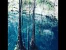 Cenote in Mexico💙