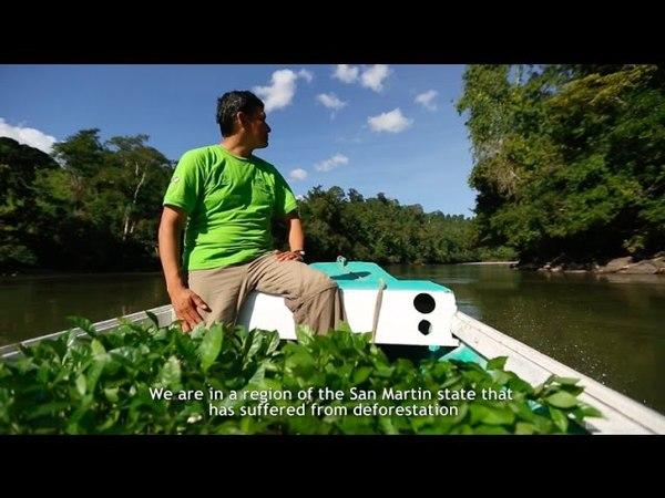 Ecosia and PUR Projet in Peru (I)