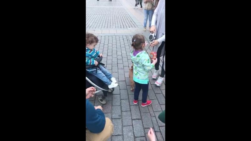 Симпатичный ребенок
