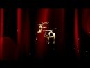 Евгений Альбина - Свадебный клип