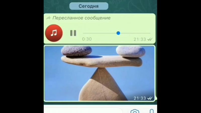 Video-862c6637196d06de40a99f1bbe352450-V.mp4