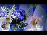 С Днем рождения в ИЮНЕ очень красивое видео поздравление музыка цветы и красоты ИЮНЯ