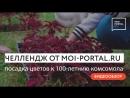 Челлендж от MOI-PORTAL