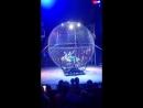 Demidovs show