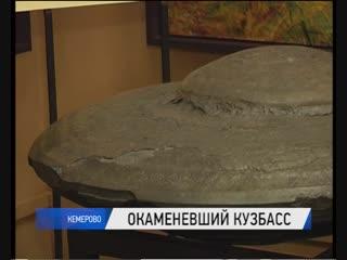 Коллекция областного краеведческого музея пополнилась очередными экспонатами – древними камнями
